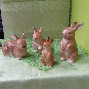 Hasen Familie