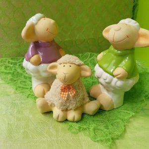 Schaf Familie